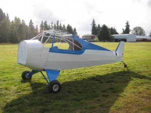 blue and white aircraft